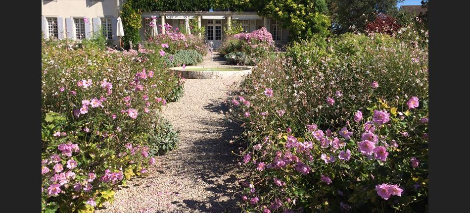Sitel entretien de jardin for Entretien jardin 41